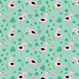 Bora-Flamingos