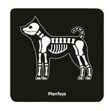 Plan-Toys-dierenarts-vet-set-x-ray