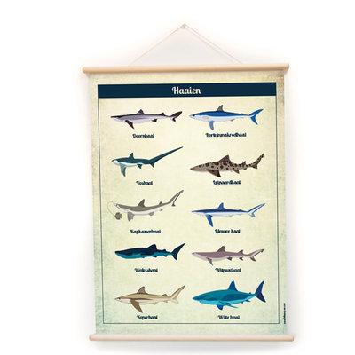 Retro schoolplaat Haaien - poster op houten rol