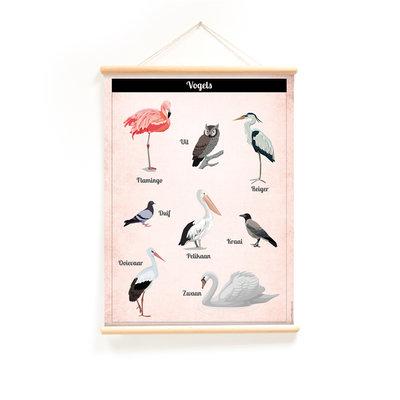 Nieuwe schoolplaat Vogels
