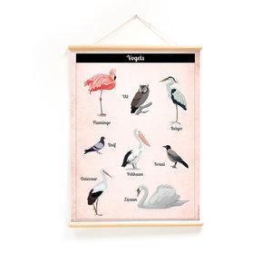 Schoolplaat-Praatplaat-Vogels-voorkant