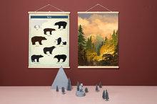 Schoolplaten-beren